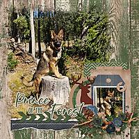 Forest-Prince-web.jpg