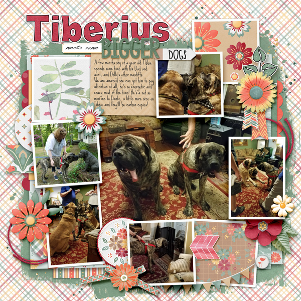 Tiberius and his family