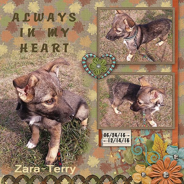 AlwaysInMyHeart_Terry