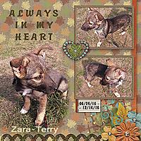 AlwaysInMyHeart_Terry.jpg