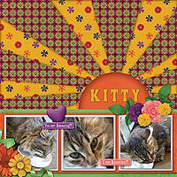 Kitty9.jpg
