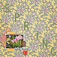 Spring_Flowers8.jpg