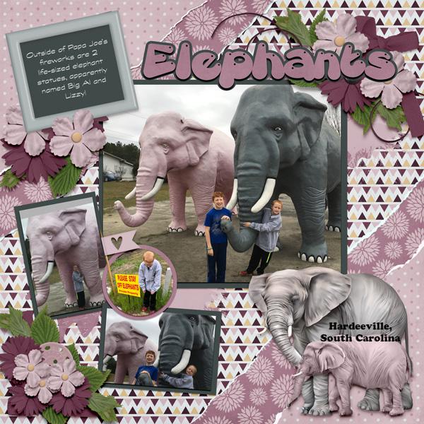 2018 02 Elephants