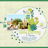 2-12-19-Good-Morning-Arizona.jpg