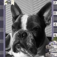 GOOD-DOG3.jpg