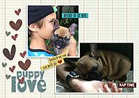 Backup_Puppy-loveBs.jpg