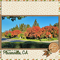 Placerville-red-trees-small.jpg