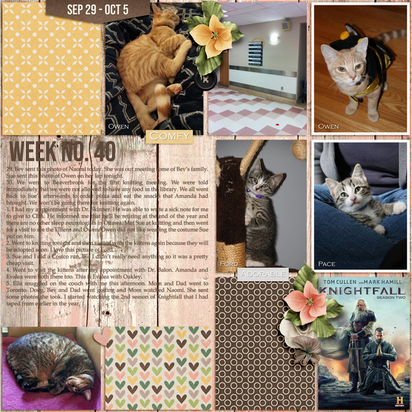 2019 Day2Day Week 40