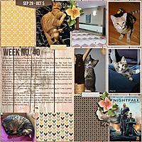 Week-403.jpg