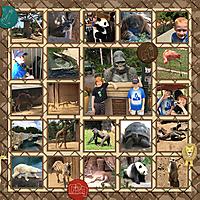 2017_CAHI_-_Day_10-145_SD_zooweb.jpg