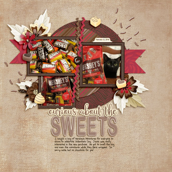 Curious About the Sweets