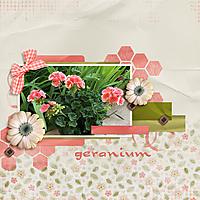 0-Geranium.jpg