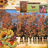 Autumn701.jpg
