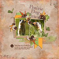 Prairie-Dog-Town--Kmess_MarchTemp2_Background.jpg