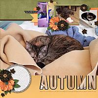 autumnkitty_tiny.jpg