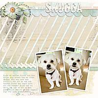 sd-lovemydog-ck02.jpg