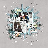 winter40.jpg