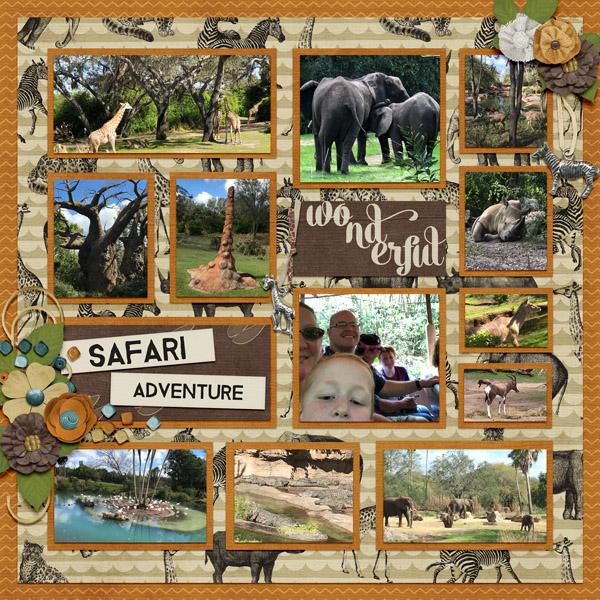 2018 02 Safari