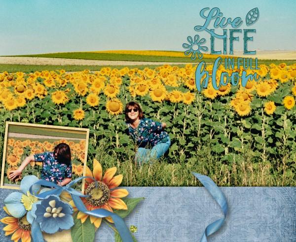 Live Life in Full Bloom