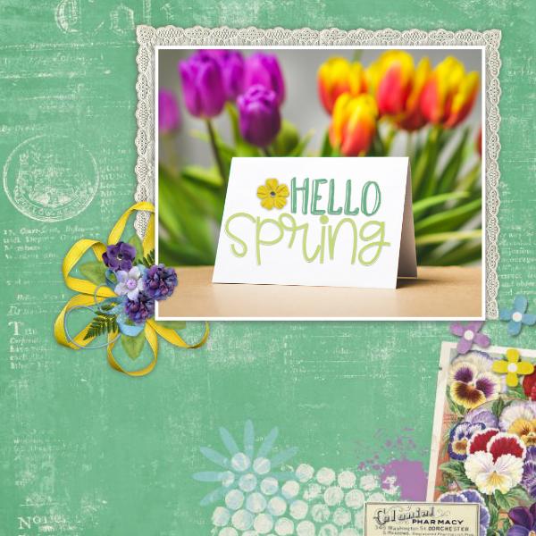 Hello_spring19