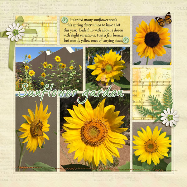Sunflowers - pocket scrap chall Aug 2019