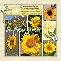 0-sunflowers.jpg