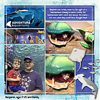 2019_08_20_Camden_Aquariumm_R_450kb.jpg