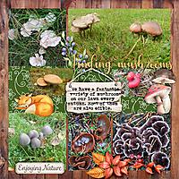 Finding-mushrooms.jpg