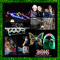 ZooLights_2015_tinycovered.jpg