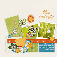 The_butterfly.jpg
