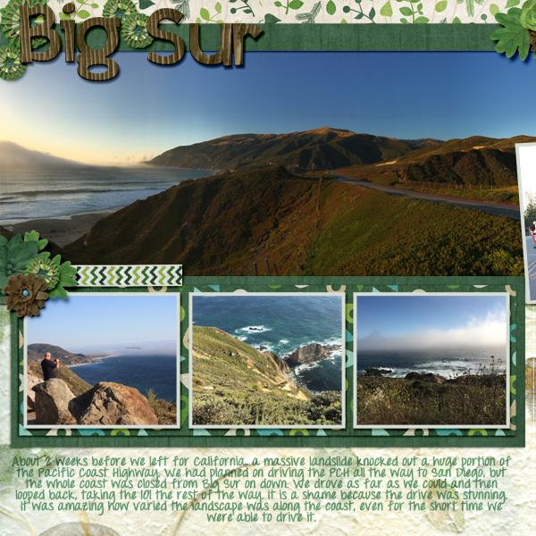 2017 CA Big Sur1