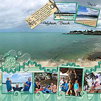 2017-CAHI---Day-11-152-153-Hickam-Beach.jpg