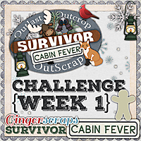 GS_Survivor_9_CabinFever_1_NO_NAME.jpg