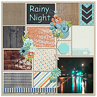 rainy_night_8x8_72.jpg