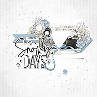 2-1-19-Snowy-Days.jpg
