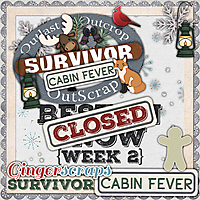 GS_Survivor_9_CabinFever_2_BestInSnow_CLOSED.jpg