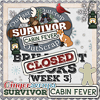 GS_Survivor_9_CabinFever_3_BrilliantBooks_CLOSED.jpg