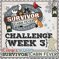 GS_Survivor_9_CabinFever_3_NO_NAME.jpg