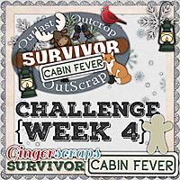 GS_Survivor_9_CabinFever_4_NO_NAME.jpg