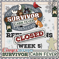 GS_Survivor_9_CabinFever_5_Reflections_CLOSED.jpg
