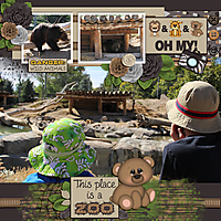 Bear-at-the-Zoo-Tinci_CEAF_30.jpg