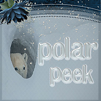 Polar-Peek.jpg