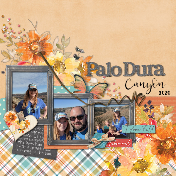 Palo Dura Canyon 2020
