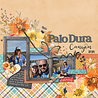 DLPatt_PaloDuraCanyon2020.jpg