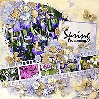 Spring-Flowers8.jpg