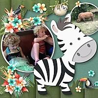 Wild_Zebra.jpg