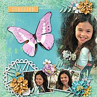Sunshine_Gallery_Size1.jpg
