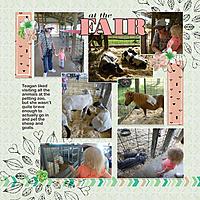 08-Fair-animals.jpg
