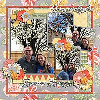 2020_03_14-Bradford-Pear-trees---MFish_SpringPhotoClusters_02.jpg