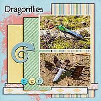 Blessings_Dragonflies.jpg